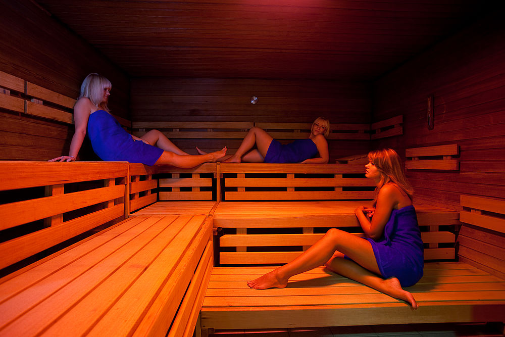 sauna hains freizeitzentrum freital. Black Bedroom Furniture Sets. Home Design Ideas